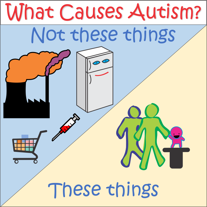 the causes of autism Information for parents on the possible cause, or causes, of autism and other autism spectrum disorders, also known as pervasive developmental disorders.