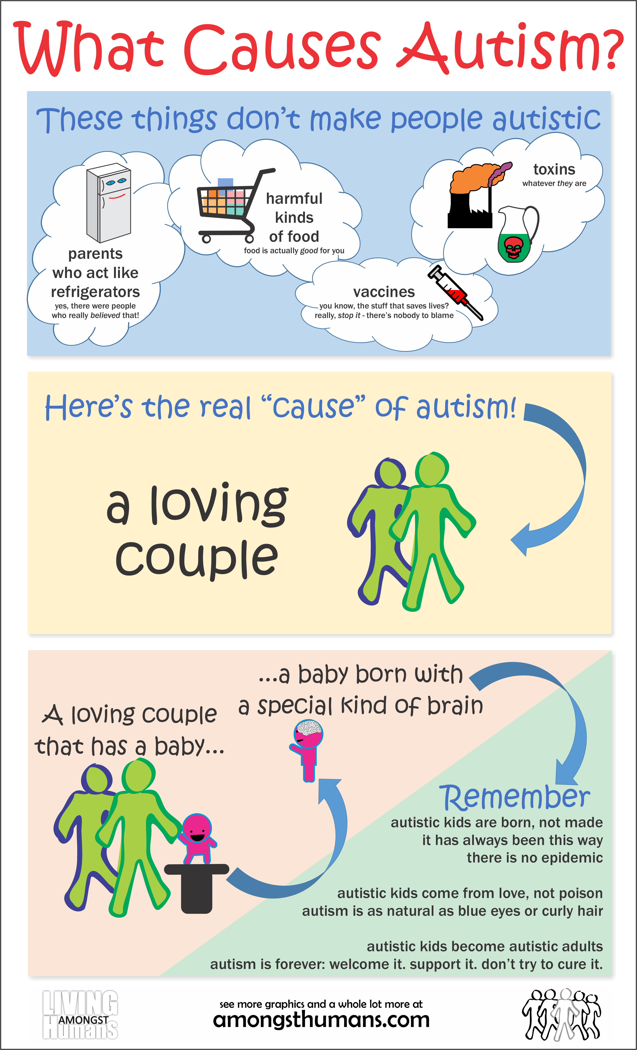 What Causes Autism - Infographic